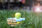 Stacked books in grass — Stock Photo