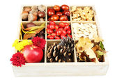 Autumn composition in wooden box — Stock Photo