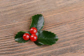 Leaves of mistletoe with berries — Stock Photo