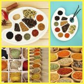 Collage of different spices — Stock Photo