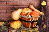 Pumpkins in wooden tub — Stock Photo