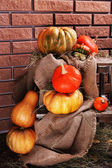 Pumpkins on wooden ladder — Stock Photo