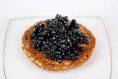 Black caviar on crispy bread on plate — Stock fotografie
