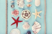 Sea souvenirs on light blue background — Stock Photo