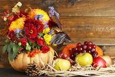 Beautiful autumn composition — Photo