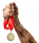 Golden medal in hand — Stock Photo