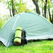 Touristic tent on green grass in a forest — Stock Photo #57613447