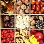 Autumn composition in decorative box — Stock Photo #57614011