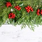 Christmas border from fir and mistletoe — Stock Photo #57618605