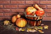 Pumpkins in wooden tub on floor on brick wall background — Stock Photo