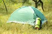 Touristic tent on dried grass in a forest — Stock Photo