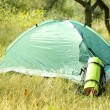 Touristic tent on dried grass — Stock Photo #57868683