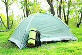 Touristic tent on grass — Stock Photo