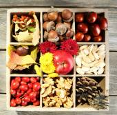 Autumn composition in decorative wooden box, on wooden table — Stock Photo