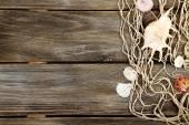 Decor of seashells on wood — Foto de Stock