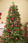 装饰的圣诞树 — 图库照片