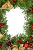 Beautiful Christmas border from fir — ストック写真