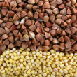 Millet and buckwheat texture — Stock Photo #57973755
