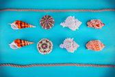 Sea souvenirs — Stock Photo