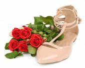 Beautiful woman shoes — ストック写真