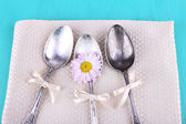 Metal spoons and camomile — Stock Photo