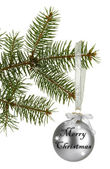 Christmas ball on fir tree, isolated on white — Stock Photo