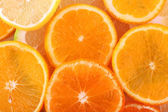 Oranges and sweetie close up — Stock fotografie