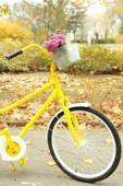 Yellow bicycle in autumn park — Foto Stock