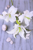Beautiful lily on wooden table — Stock Photo