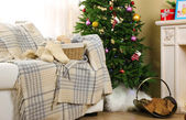 Beautiful Christmas interior — Stock Photo