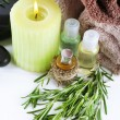 Branches of rosemary and sea salt — Stock Photo #60894809