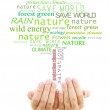Concept of environmental protection, words in tree shape in hands isolated on white — Stock Photo #60922839