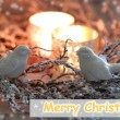Christmas wreath with candles and decorative birds close-up — Stock Photo #60923545