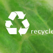 Recycle symbol on green leaf background, recycling concept — Stock Photo #60924313