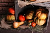 Pumpkins in crate on floor — Stock Photo