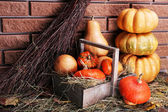 Pumpkins in wooden box — Stock Photo