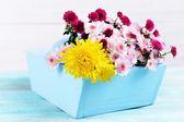 Beautiful flowers in box — Stock Photo