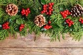 Beautiful Christmas border — Stockfoto