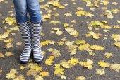 Девочка в резиновых сапогах на открытом воздухе осенью — Стоковое фото