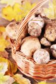 Wild mushrooms and autumn leaves in basket close-up — Stock Photo