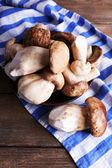Wild mushrooms on plate — Stock Photo
