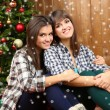 Beautiful young sisters twins. Christmas and New Year — Stock Photo #61040887