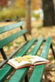 Open book with leaf — Stock Photo