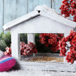 Handmade birdhouse in winter — Stock Photo #61125995