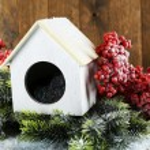 Handmade birdhouse in winter — Stock Photo #61126001