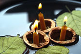 Nutshells with candles — Stockfoto