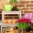 Flowers in wooden box, pots and garden tools on bricks background. Planting flowers concept — Foto de Stock   #61211883