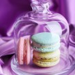 Gentle colorful macaroons in glass bell jar on color fabric background — Fotografia Stock  #61219047