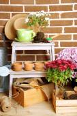 Flowers in pot on stepladder — Stock Photo