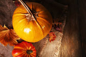 Ripe pumpkin background — Stock Photo